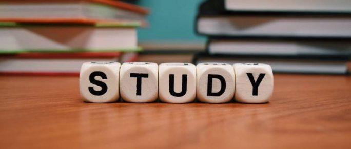 borsa di studio