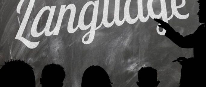 docente lingue